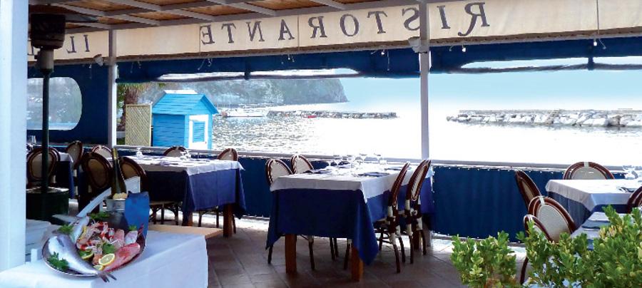 Il Delfino Restaurant